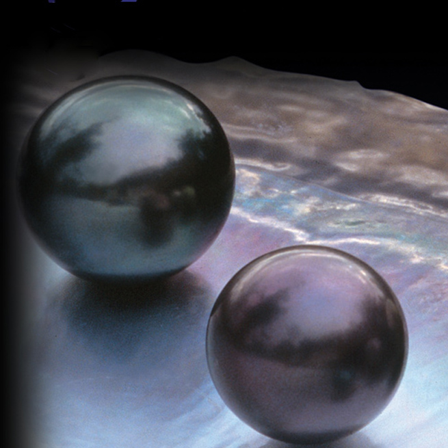 Tahitian Cultured Pearl